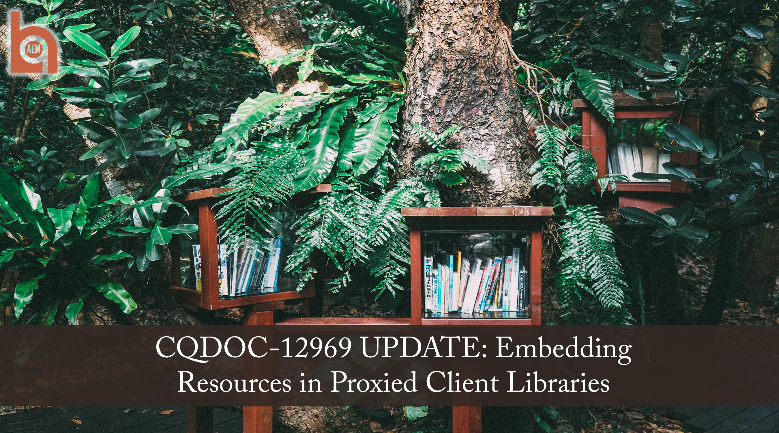 CQDOC-12969 UPDATE: Embedding Resources in Proxied Client Libraries